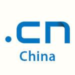 .cn domain