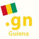 .gn domain