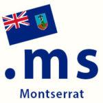 .ms domain