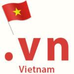 .vn domain